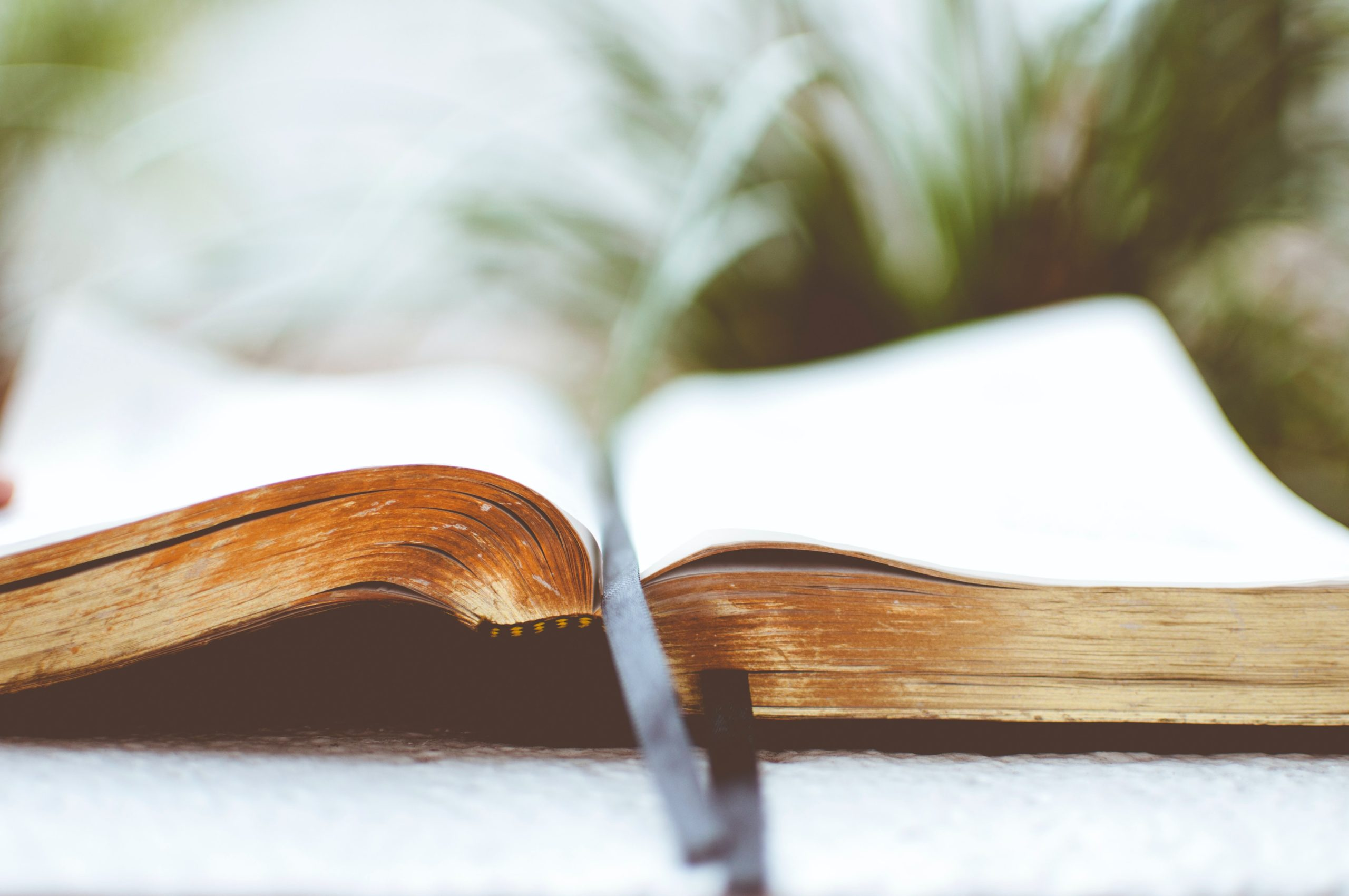 CONSIDER: Connections between Matthew 25 vision, scripture & theology
