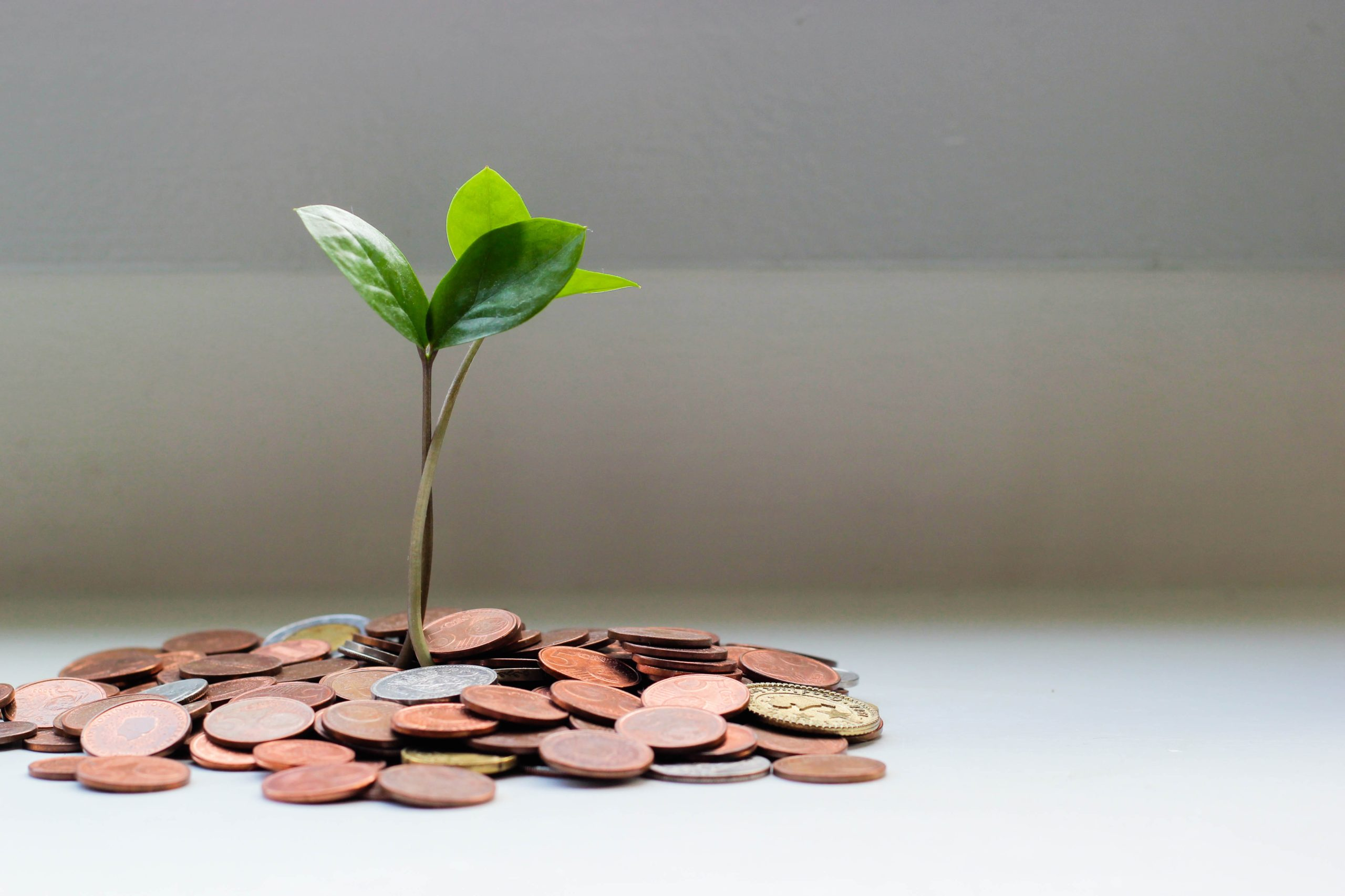 PROVIDE: PLM seeks 2022 proposed budget feedback via meetings, emails